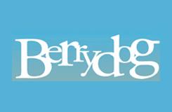 Berrydog Bikinis & Beachwear