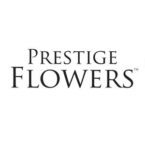 Prestige Flowers Promo Codes